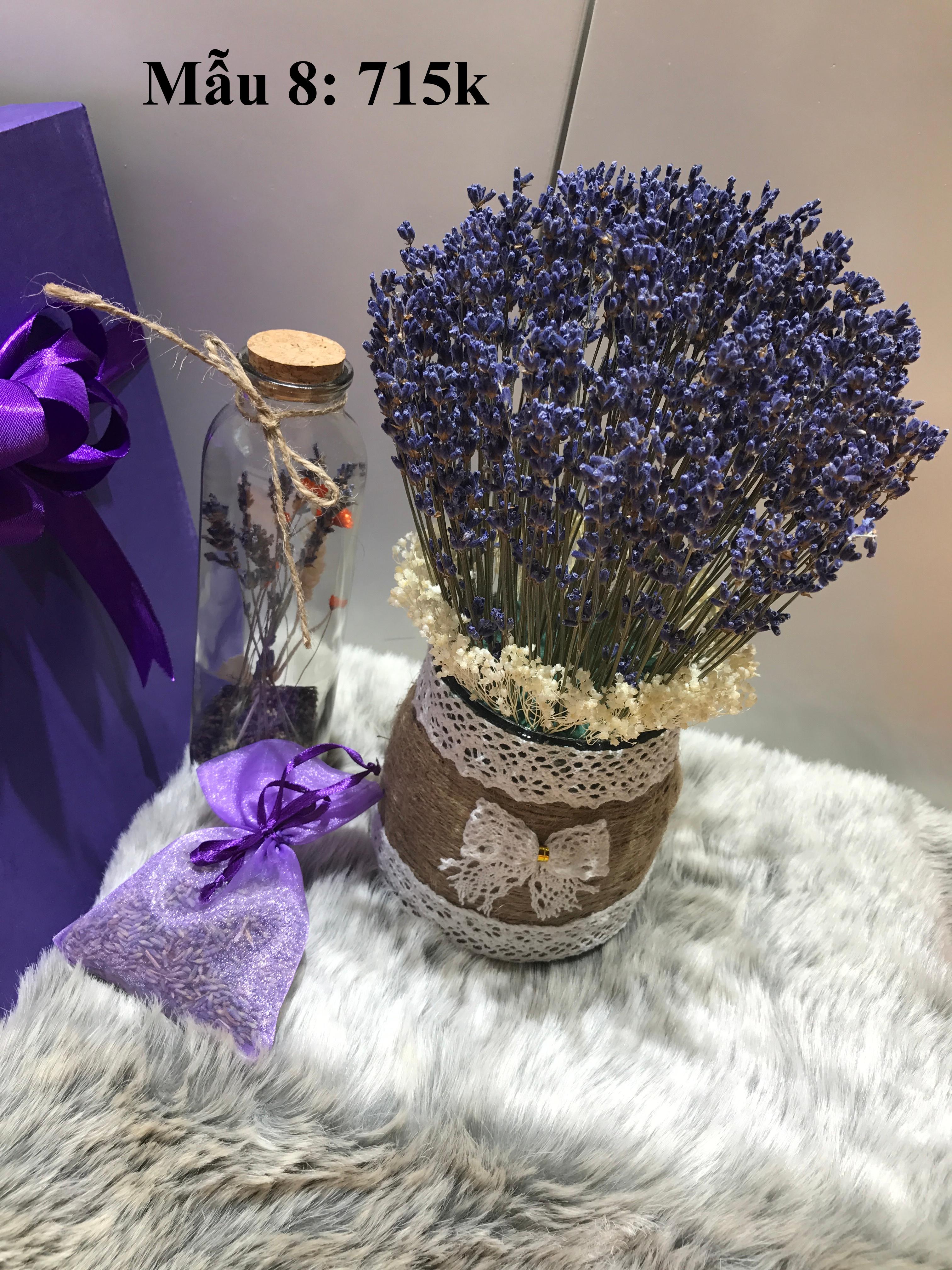 Set quà hoa lavender khô Pháp
