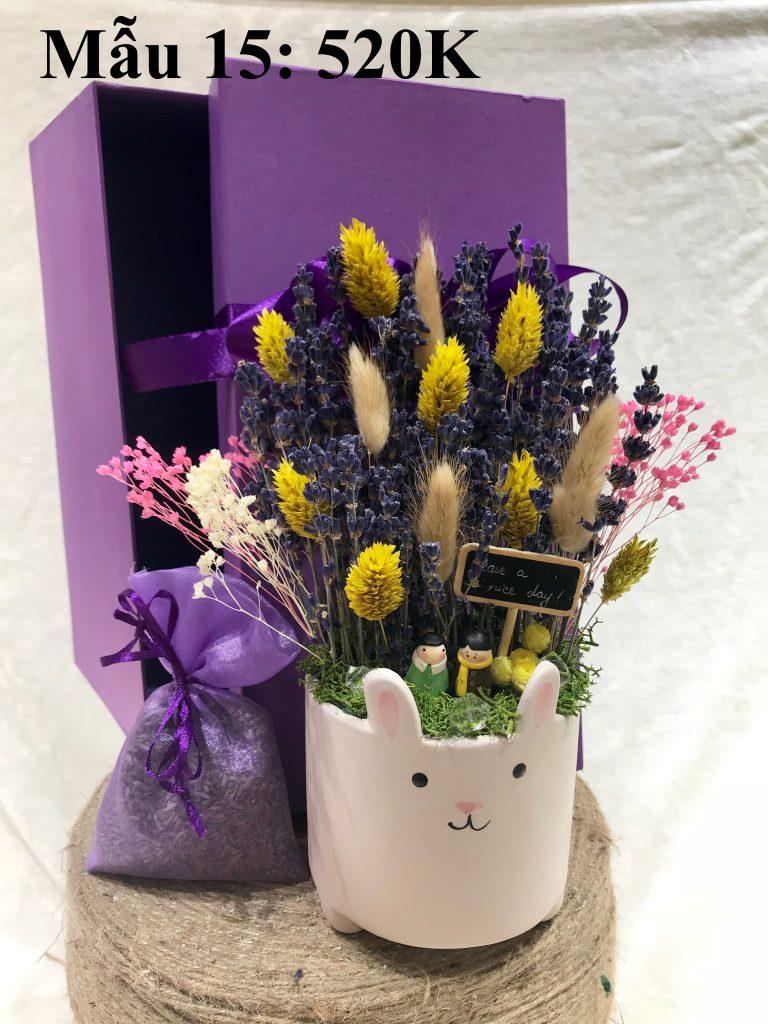 Thế giới Lavender