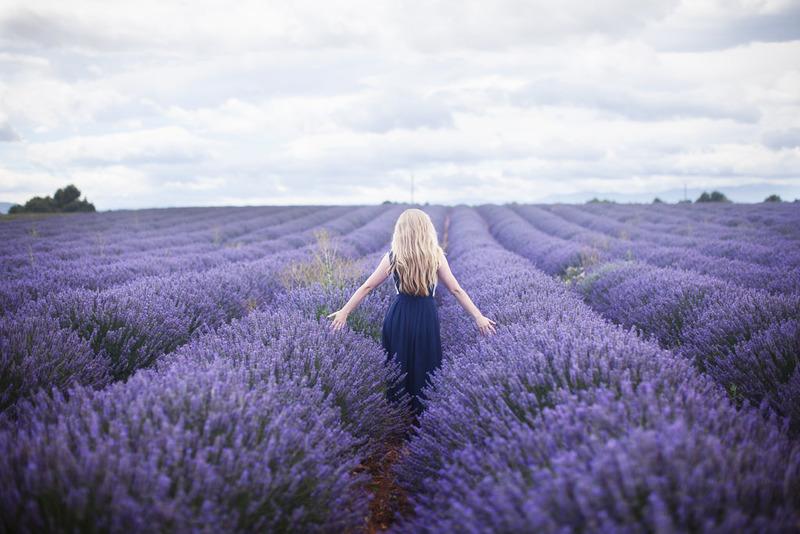 sữa tắm Lavender