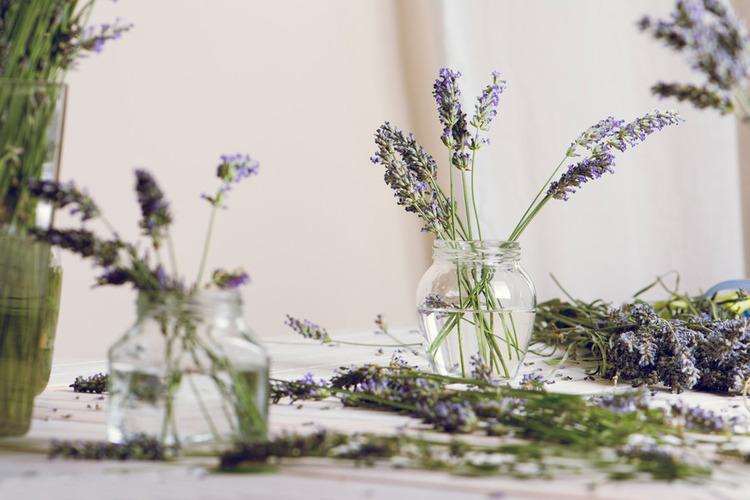 Sữa tắm Lavender Pháp