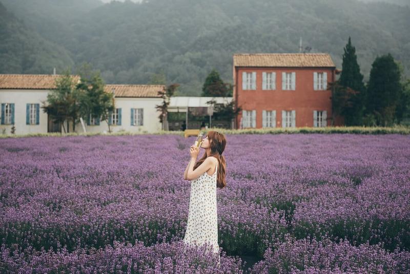 dưỡng thể Lavender